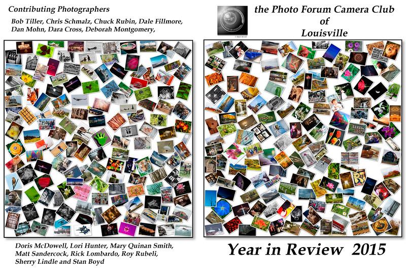 Cover PFCC YIR 2015.jpg
