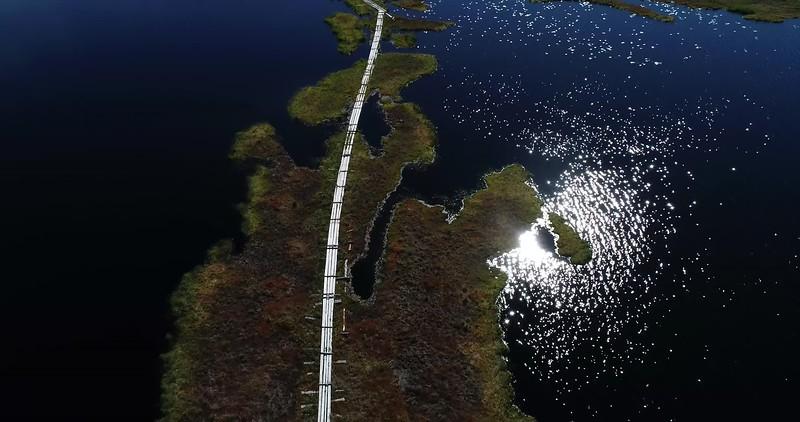Aerial: top down flight over a wooden footbridge crossing a glittering lake