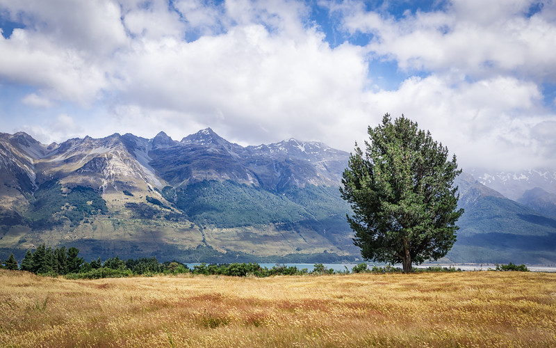 fields-glenorchy-new-zealand.jpg
