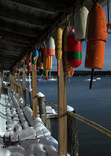 Owls Head Harbor Buoys.jpg