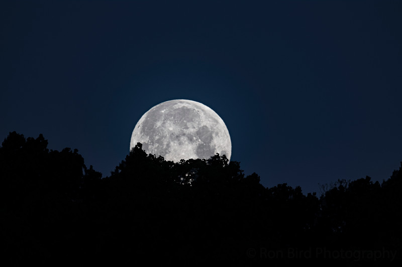 """5.7.20 - Luna.  The """"Flower Moon"""" setting this a.m."""