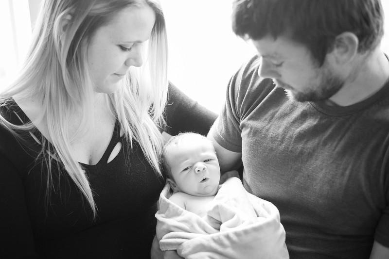 NewbornNash.2016.02.29-22.jpg