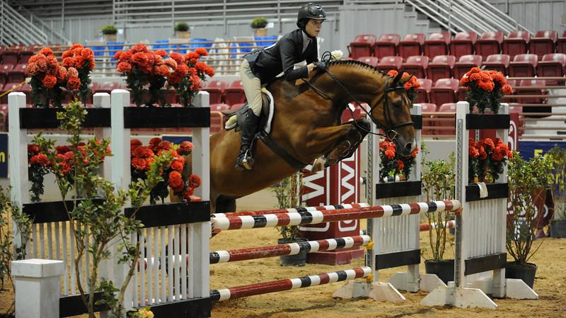 Horse show (72).jpg