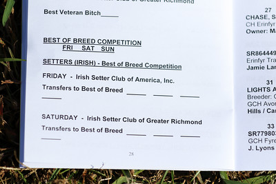Best of Breed- Camera #1