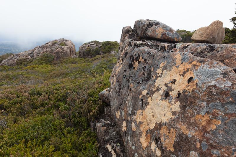 Tasmania_2015_185.jpg