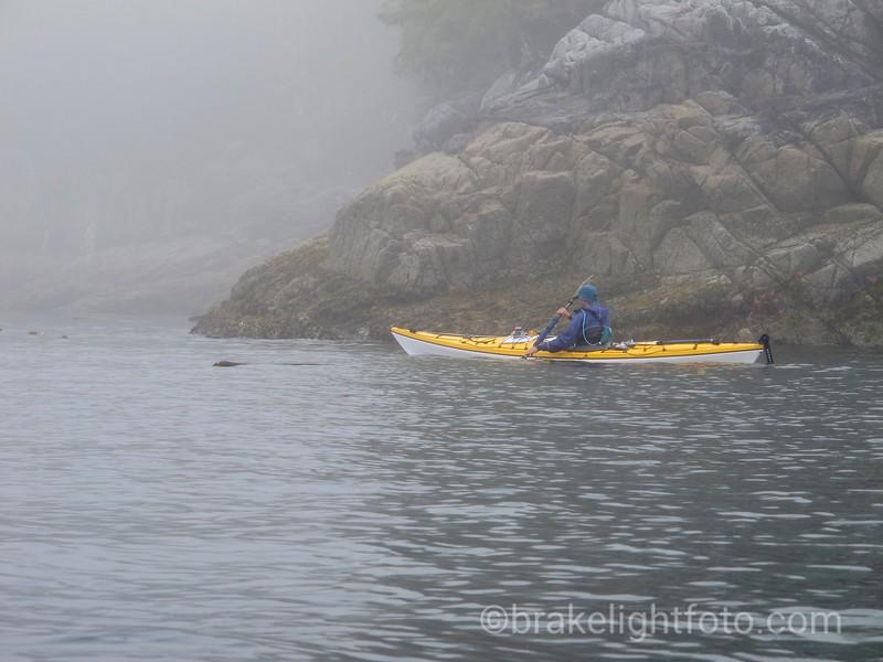 Paddling along Hastings Island, Laredo Sound