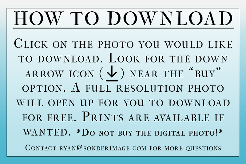 How To Download 2.0.jpg
