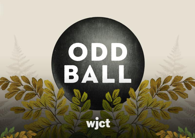 Odd Ball capture.PNG