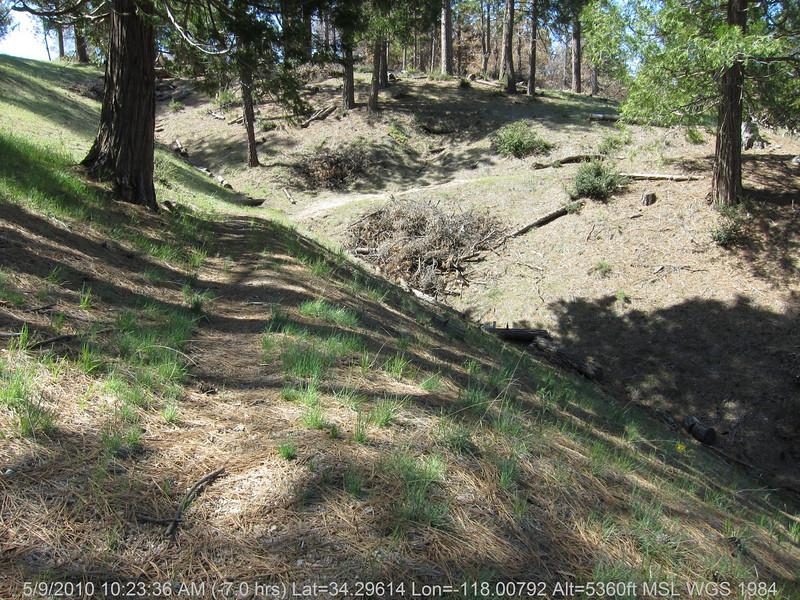 20100509005-Trail Recon, Charlton Flats.JPG
