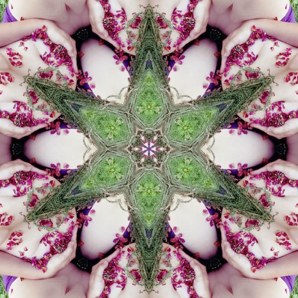 65786_mirror14.jpg