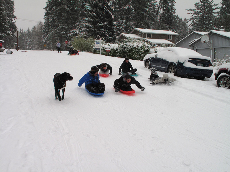 Schools closed. Kids on our street having a ball ... Day 3. First snow of 2012. Freeland, Whidbey Island. January 19, 2012