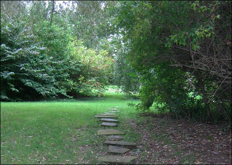 Yard path - Ohio, 2004