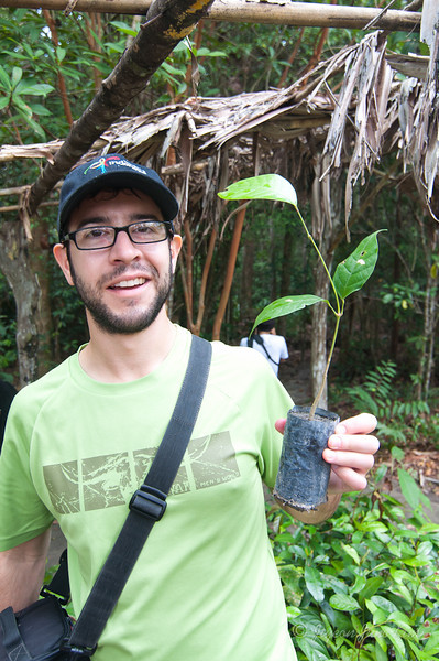Borneo-Jungle-6738.jpg