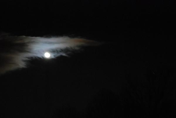 Blue Moon 010110