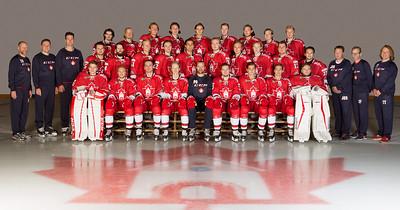 Bergen Icehockey 2016-2017