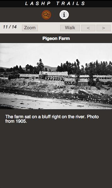PIGEON FARM 11.png