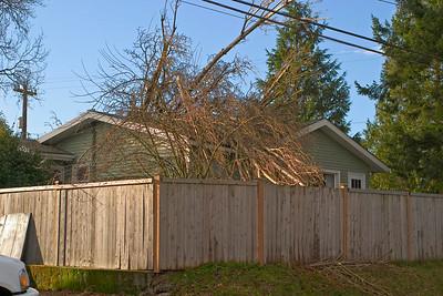 Seattle 12/14 storm