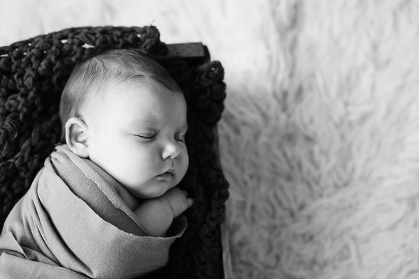 ss newborn mini