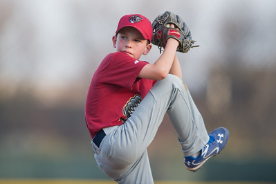 Ian Foy Baseball