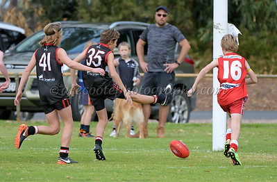 Junior Colts 2018 - Round 7 v Bordertown