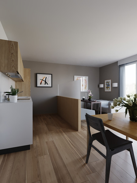 velux-gallery-kitchen-03.jpg