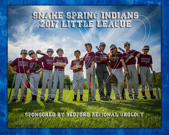 Snake Spring Indians 2017 LL Weber