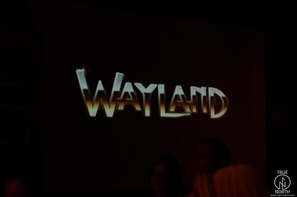9-2-11 gz-wayland