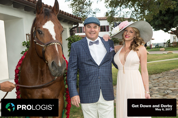 Down and Derby Horse Photos