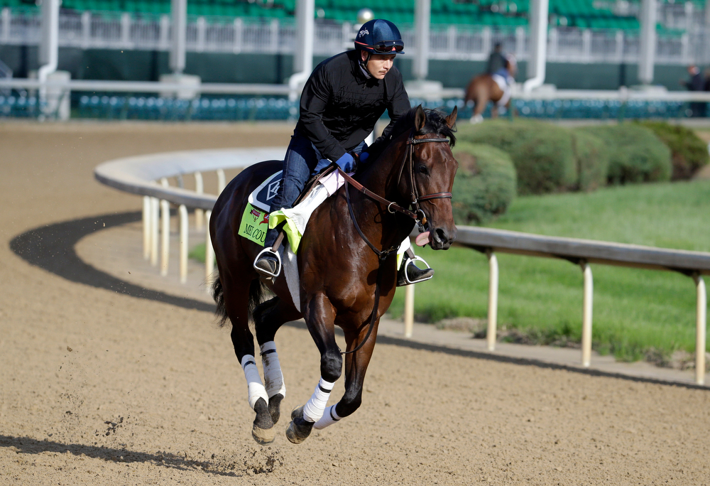 . Exercise rider Faustino Aguilar takes Kentucky Derby entrant Medal Count for a morning workout at Churchill Downs Thursday, May 1, 2014, in Louisville, Ky. (AP Photo/Morry Gash)