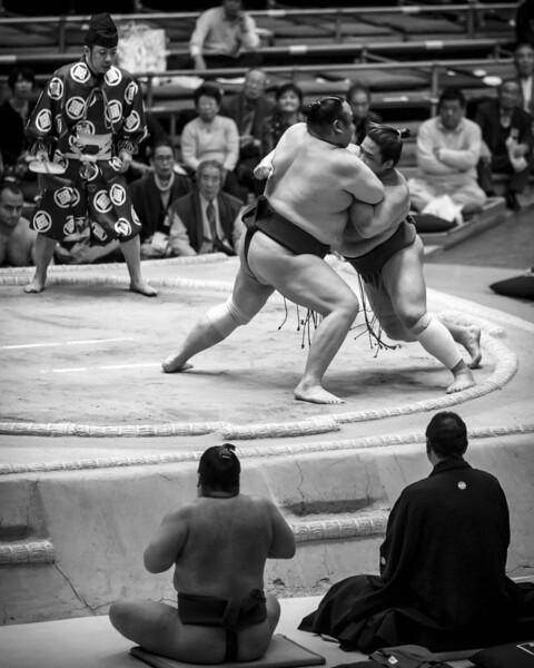 Osaka Sumo 220313 36 .jpg
