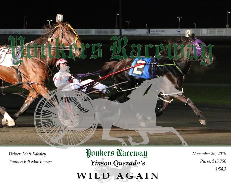 20191126 Race 4- Wild Again 2.jpg