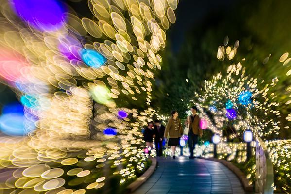 2015 Christmas Illumination