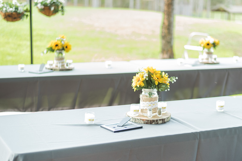 ELP0224 Sarah & Jesse Groveland wedding 37.jpg