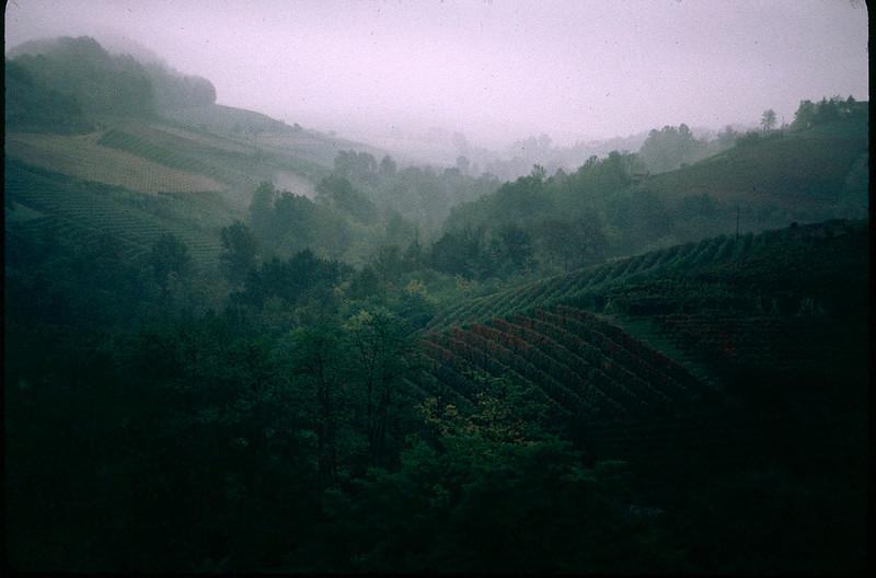 ItalyNapa1_006.jpg