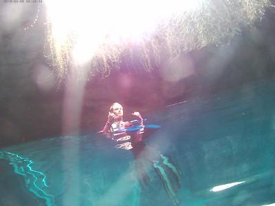 November 2018 Dive Trip