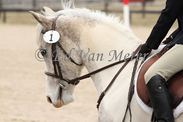 Eventing 2014