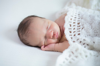 Asher Newborn Portraits