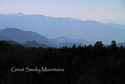 Great Smoky Mtns. 2010