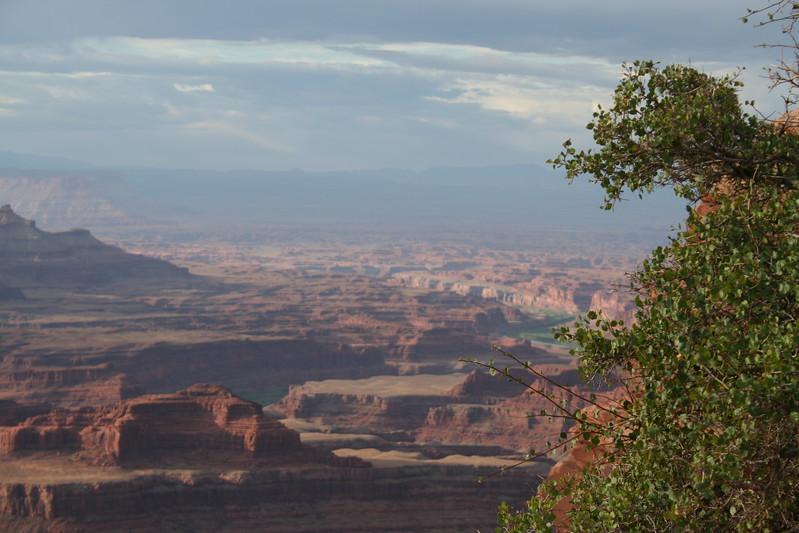 20080909-035 - Dead Horse Point State Park UT - 35 Canyonlands.JPG