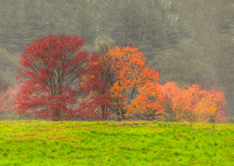 Fall and rain