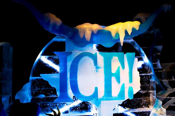 """ICE"" 2008-GAYLORD TEXAN RESORT"