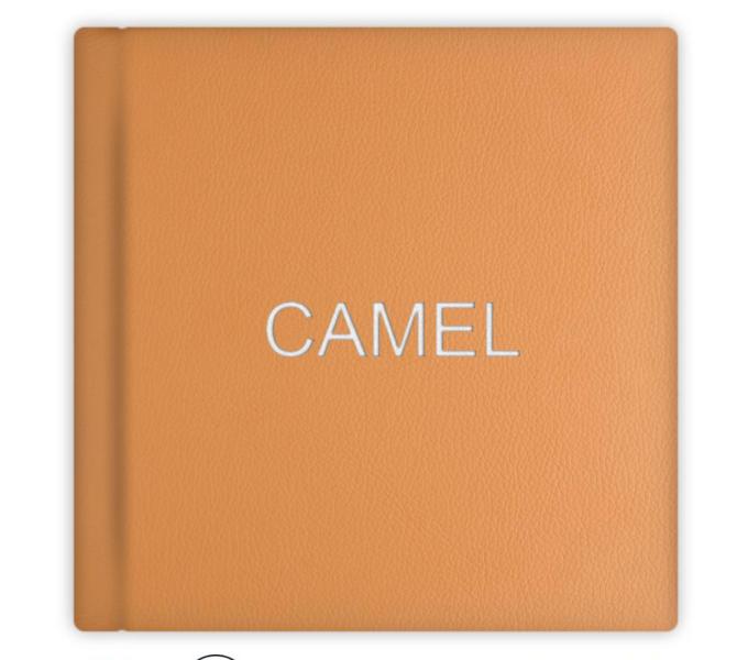 020 Camel.png