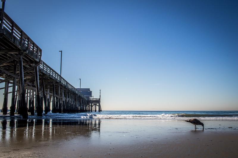 california pictures 2017-4.jpg