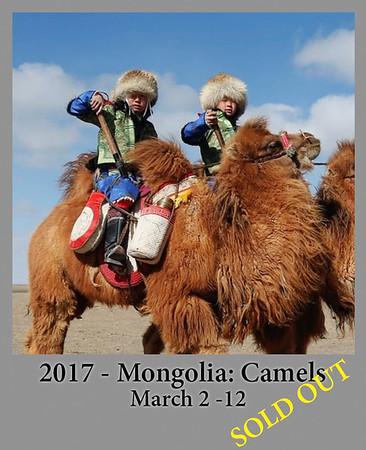 03-02-17 Mongolia Camels - Horses - Eagles