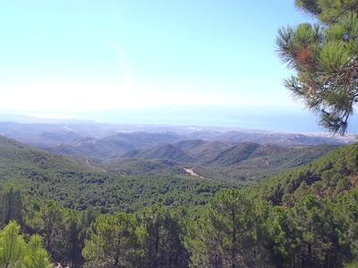Day away in Estepona, costa del sol-- Spain!