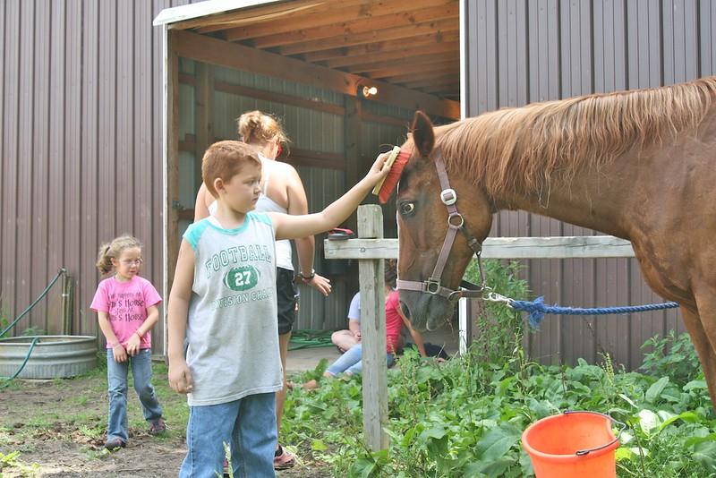horse-care_4880978115_o.jpg