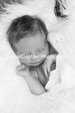 NewbornModelNovember