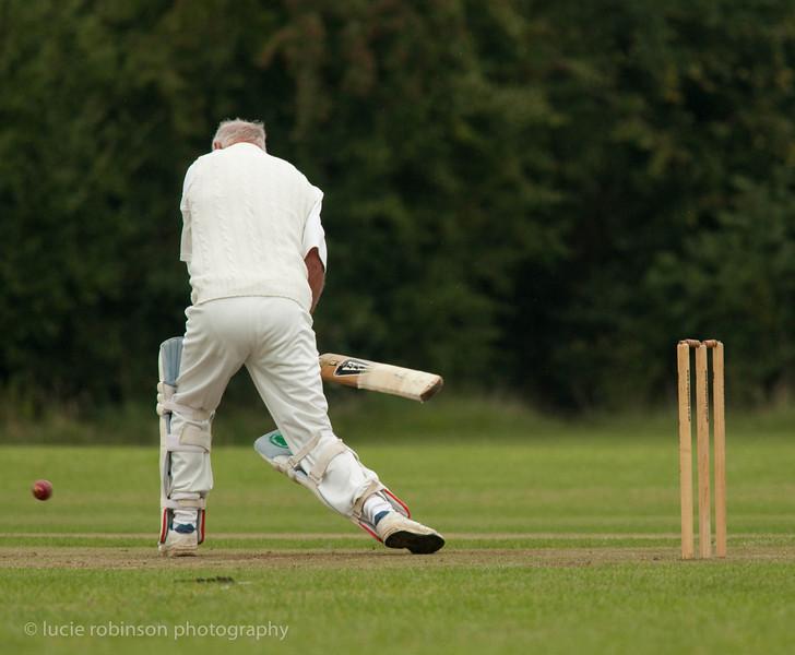 110820 - cricket - 198.jpg