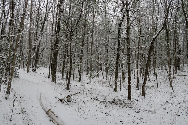 Ridgeline Trail -- 2,520'