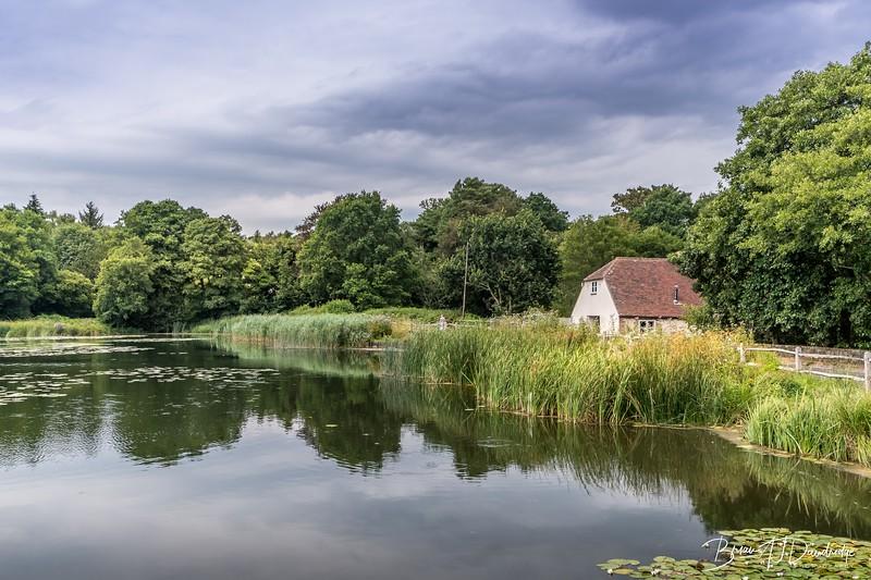 Burton and Chingford Ponds (21 of 24).jpg